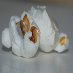 Macro foto's - Popcorn Close up