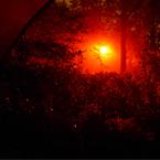 Rode lantaarnpaal