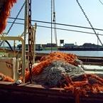 Visnet op de boot